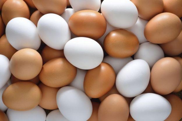 Huevo propiedades