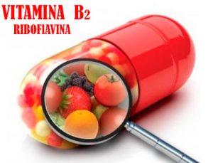 Vitamina-b2-riboflavina beneficios y propiedades.