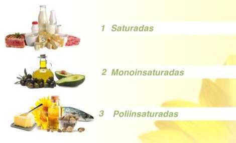 Funciones de la grasa