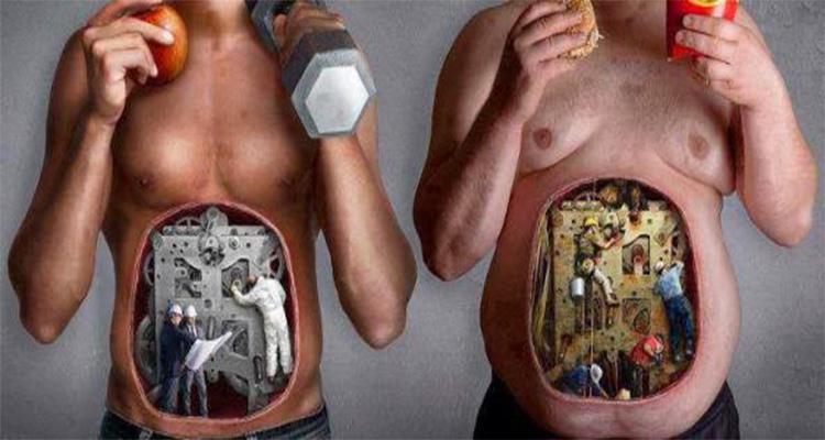 metabolismo como activarlo