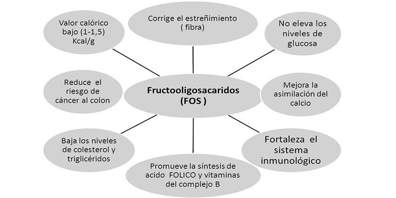 fructooligosacaridos propiedades