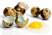 Beneficios de los huevos de codorniz