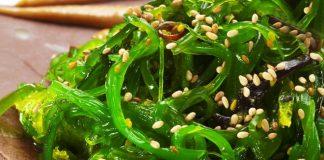 Algas marinas verduras del oceano