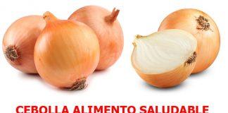 cebollas calorias