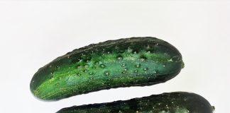 Pepino rico en vitamina c