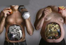 ayuda al metabolismo