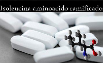 Isoleucina aminoacido ramificado propiedades