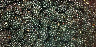 moras-fuete-de-vitaminas-y-antioxidantes