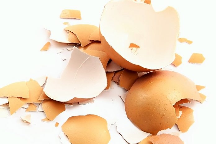 cascara-de-huevo-fuente-de-calcio