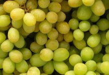 las-uvas-son-beneficiosas-para-la-salud