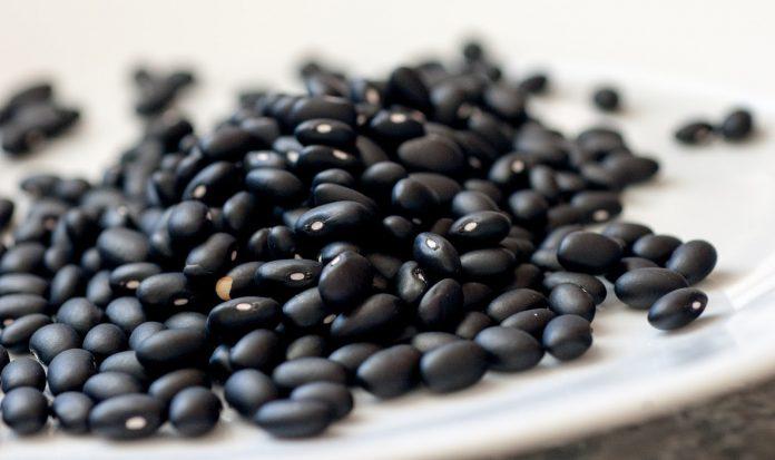 alubias-negras-beneficios-para-la-salud