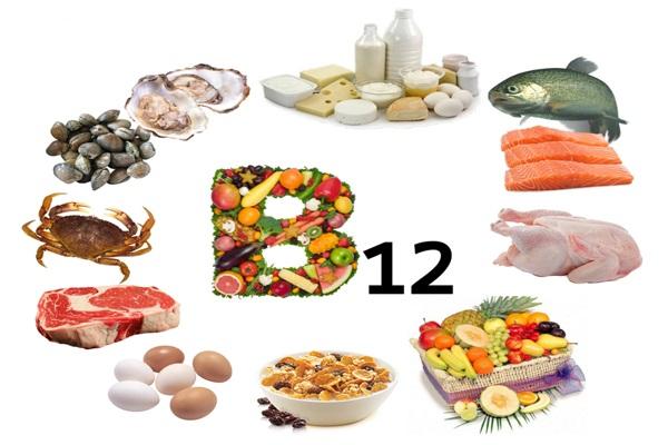 vitamina b12 fuentes y funcion