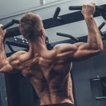 Músculo y grasa